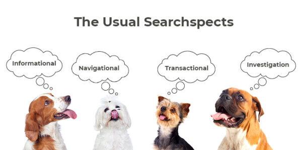انواع قصد جستجوی کاربر